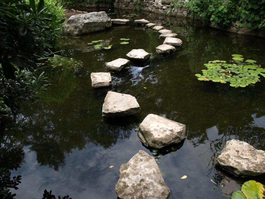 Stepping Stones in the Koi Pond.jpg